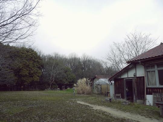 110311_1.JPG